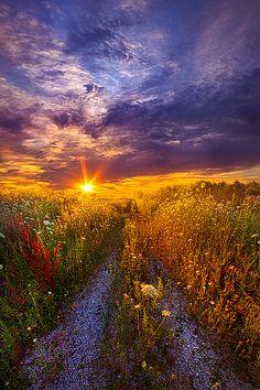 The Shortcut - Pinned by Mak Khalaf Wisconsin Horizons By Phil Koch. Lives in Milwaukee Wisconsin USA. Nature beautifulbeautybluecloudsforesthopehorizonsjoylandscapelightlovenaturepathpeaceroadskysummersunsunsettraveltreeswisconsin by PhilKoch Image Nature, All Nature, Amazing Nature, Nature Photos, Nature Videos, Beautiful Nature Pictures, Beautiful Sunset, Beautiful World, Beautiful Places