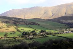 """Photography from Inch and Dingle area """"at Camp"""" - Wednesday 30th January"""