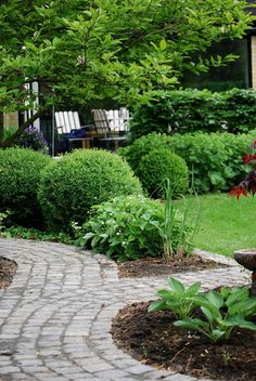 Garden with brick paths - love this