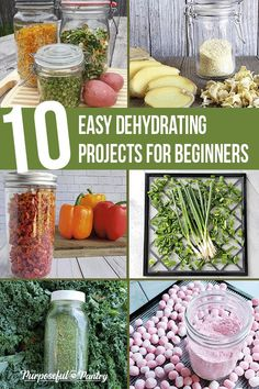 Recipes Snacks Easy Does your new dehydrator confound you? Pick one of these easy, foolproof Dehydrating Projects for Beginners and get started today! Dehydrated Vegetables, Dehydrated Food, Veggies, Snacks, Snack Recipes, Healthy Recipes, Konservierung Von Lebensmitteln, Plat Vegan, Dehydrator Recipes
