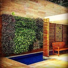 WG® | Em Manaus AM,  @floraeto é a referência em jardins verticais. Revenda Autorizada dos produtos WallGreen®. #floraeto #wallgreen #jardinsverticais #muroverde #paredeverde #jardimvertical #verticalgarden #gardensolution #landscape #paisagem #verde #eco #ecofrendly #design #arquitetura #plantas 🇧🇷🍃🖼✍  www.wallgreen.com.br