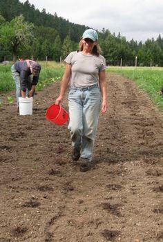 OSU Women Farmer Networks | Small Farms Programs