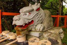 Fushimi Inari Taisha: Climbing Mt.Inari!