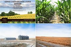 Presenting a terrific investment opportunity, 7,600± acres of #farm and #ranch land in #Kansas and #Nebraska go up for #auction on Monday, March 3rd, 2014. Available in 12 tracts and combinations, the property includes 800+ irrigated acres, 3,300+ dryland acres, and 3,000+ acres of #pasture.