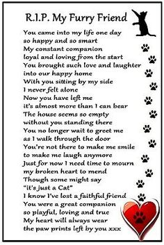Cat Bereavement Magnet 'RIP My Furry Friend' Cat Loss, Sympathy, Memorial, | eBay