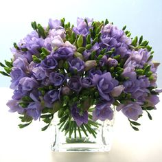 Flowers in Season for April: Freesia
