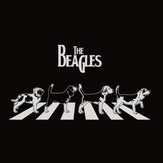 The Beagle Beatles - Portal do Dog - O maior Portal de Cachorros do Brasil