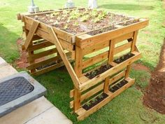 Wooden Pallet Herb Planter Pallet Ideas is part of Palette garden - Are you into the gardening activity Well, this is a kind of addiction for the ones who are really into it Other than mere plants Some herbs are also planted… Wooden Garden Planters, Herb Planters, Pallet Planters, Pallet Gardening, Gardening Blogs, Herb Gardening, Gardening Supplies, Planter Boxes, Planting