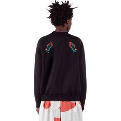 New Arrivals Category on Ioana Ciolacu Minimal Chic, Robin, Crew Neck, Bomber Jacket, Street Style, Sweatshirts, Skirts, Sleeves, Sweaters