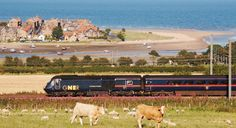 """Alnmouth, Northumberland. (This seaside bay and town looks so picturesque from the train; it's now on my """"to visit"""" list)."""