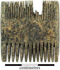 Anglian York (Eoforwic): Elephant Ivory comb, artefact 2773