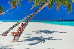 Sunny side of life  #maldives #maldivesislands #island #beach #trip #vacation #holiday #nature #earth #palm #bik https://t.co/VJJn4ck2A5 (via Twitter http://twitter.com/maldivesinpics/status/735559798503145472) - http://ift.tt/1HQJd81