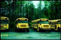How and When to Buy a Used School Bus - Article - School Bus Fleet