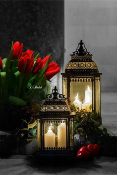 Flowers and lanterns candles Hurricane Lamps, Candle Lanterns, Candleholders, Beautiful Candles, Best Candles, Good Morning Good Night, Light Of Life, Color Splash, Beautiful Pictures