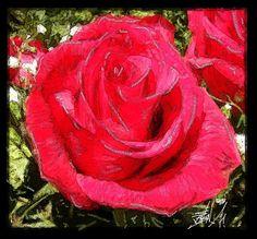 ARTFINDER: Red Rose by Susanne Jensen - Digital Art