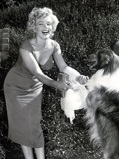 Marilyn and a Collie