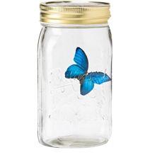 Gemmy    My Pet Butterfly – Blue Morpho