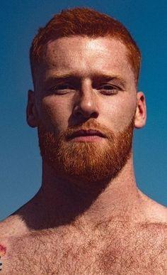 Male Model Face, Male Face, Ginger Men, Ginger Beard, Beautiful Men Faces, Gorgeous Men, Hairy Men, Bearded Men, Moustache
