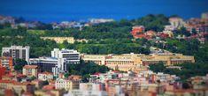 Istat: mercato immobiliare in crescita » Tradimalt blog