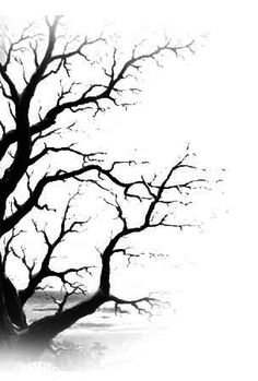 tree art - blow black tempera paint on white card stock - use water color or other mediums to create the canopy (multiple seasons)