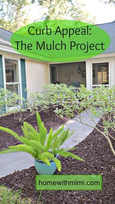 Curb Appeal: The Mulch Project
