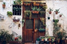brown doors with plants beautiful old street in barcelona. brown doors with plants beautiful old street in barcelona. Barcelona Pictures, Moving To Barcelona, Barcelona Food, Bilbao, Decorating Your Home, Diy Home Decor, Decorating Ideas, Decor Ideas, Green Pictures