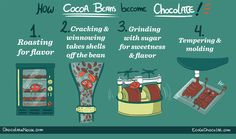 The Life and Times of CHOCOLATE, Part 2...  How cocoa beans become chocolate