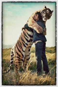 Tiger...human...love.