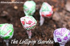 Kids earn jelly bean seeds for good deeds. Plant them, and a lollipop garden springs up overnight...