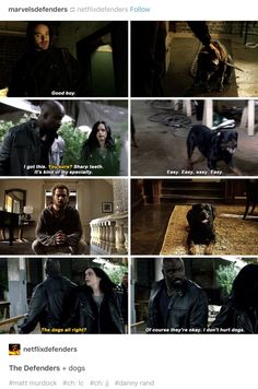 The Defenders and dogs