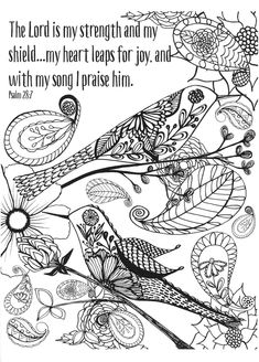 Color Gods Creation An Adult Coloring Book For Your Soul