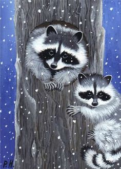 ACEO Print Raccoon Baby Snow Tree | eBay