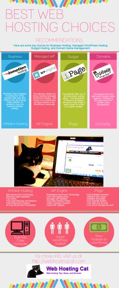 Best Web Hosting Choices Infographic