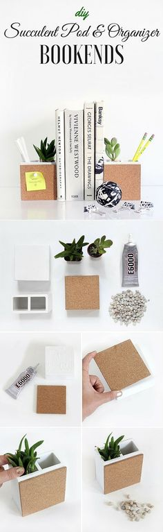 Check out the tutorial: #DIY Succulent Pod & Organizer Bookends @istandarddesign