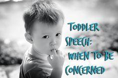 Toddler Speech Delay
