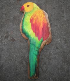 papuga- pracownia na deskach