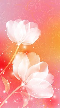 In white beauty 💚❤️💙🎶🙏 Flower Phone Wallpaper, Butterfly Wallpaper, Cute Wallpaper Backgrounds, Love Wallpaper, Cellphone Wallpaper, Wallpaper Iphone Cute, Flower Backgrounds, Galaxy Wallpaper, Beautiful Flowers Wallpapers
