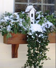 Winter Window Box Ideas Ideas in Bloom The Holidays are Fast Approaching The Silver Garden Winter Window Boxes, Christmas Window Boxes, Window Box Flowers, Flower Boxes, Container Plants, Container Gardening, Succulent Containers, Container Flowers, Vegetable Gardening