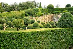 topiary .. X ღɱɧღ ||