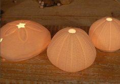 www.south-design.nl - porcelain t-lights - sea urchins - magical light