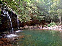 Stinging Fork Falls Trail | Waterfalls in Tennessee