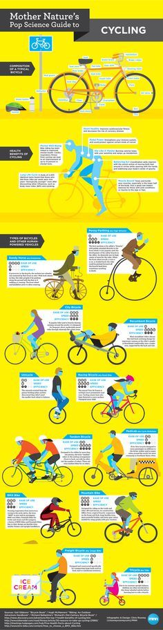 Penny-farthingista pyörätaksiin, polkupyörät ovat yksi kaikkein monimuotoisimmista kulkuvälineistä. Tässä hieman infografiikkaa aiheesta.