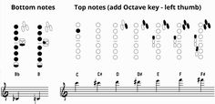 bottom and top notes saxophone fingering chart
