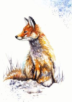 A4 Original Watercolour Painting by Be Coventry,Animals,Realism,Fox