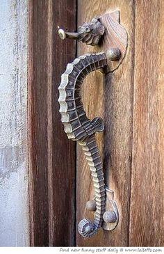 Seahorse door latch
