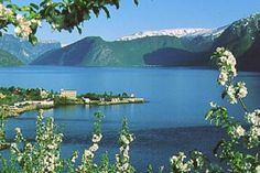 Site with information about a Fjord Pass. Possible discounts.