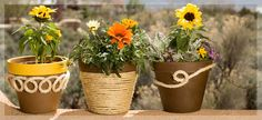 See! Told you rope design was everywhereSisal rope perks up these planters! From #lowescreativeideas.com