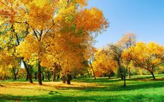 fall download free desktop computer pictures