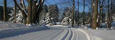Cross-Country Skiing in Northern Michigan   Crystal Mountain X-C Skiing