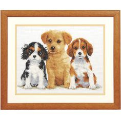 """Endearing Puppies  WEE THREE endearing puppies. It's love at first sight! Counted cross stitch kit includes 14-count white Aida cloth, presorted DMC cotton floss, needle, chart and instructions. 11 1/4"""" x 8 3/4"""" without mat and frame. Imported from Belgium. A Stitchery exclusive!    ****   Endearing Puppies  Item #:T22512  Price:$34.99"""